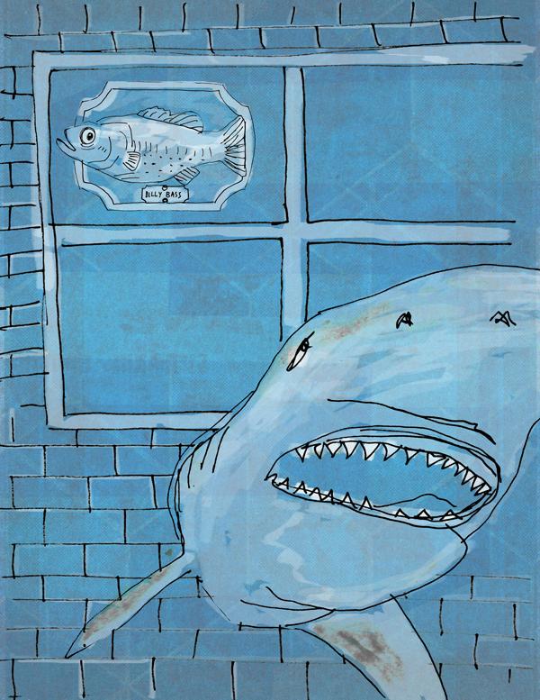 overstroming en haaien