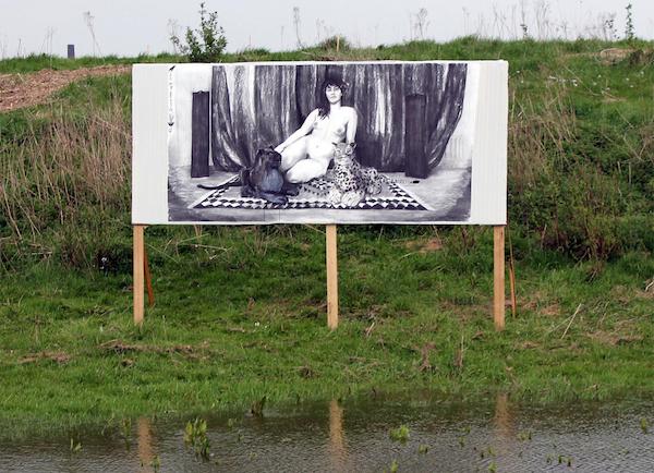 Naakt in de polder