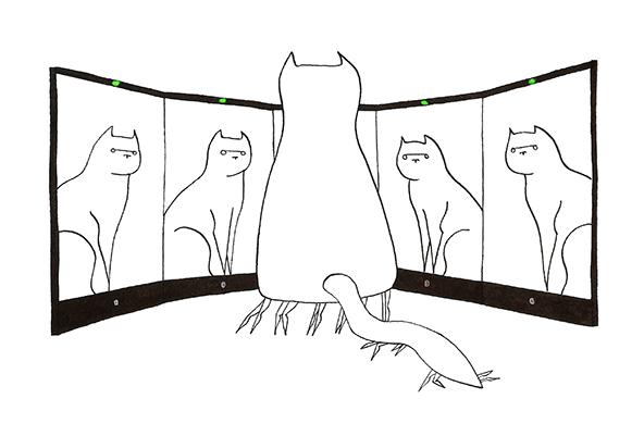 Katten zijn onze ondergang