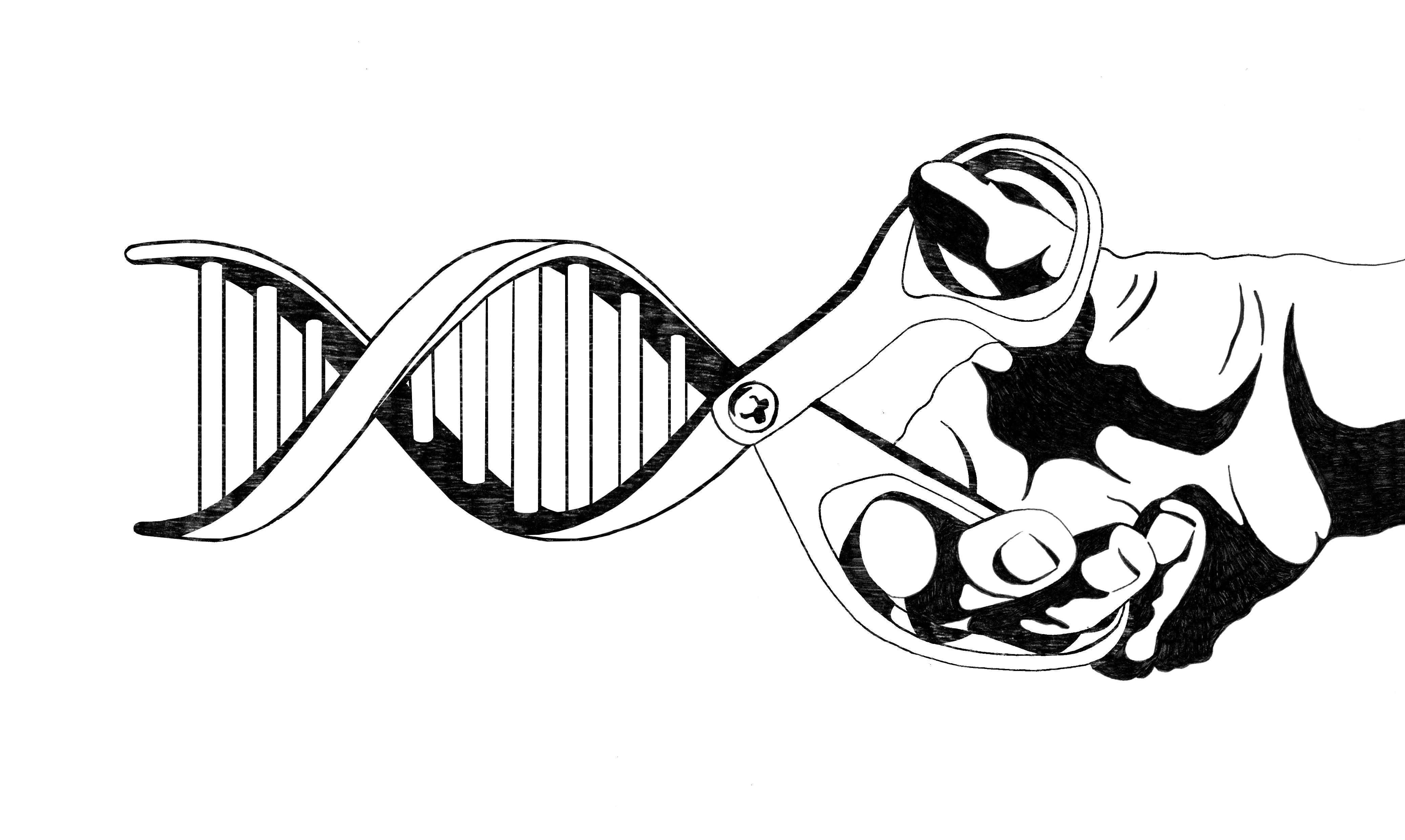 Essay: Hoera, het is een CRISPR-Casje!