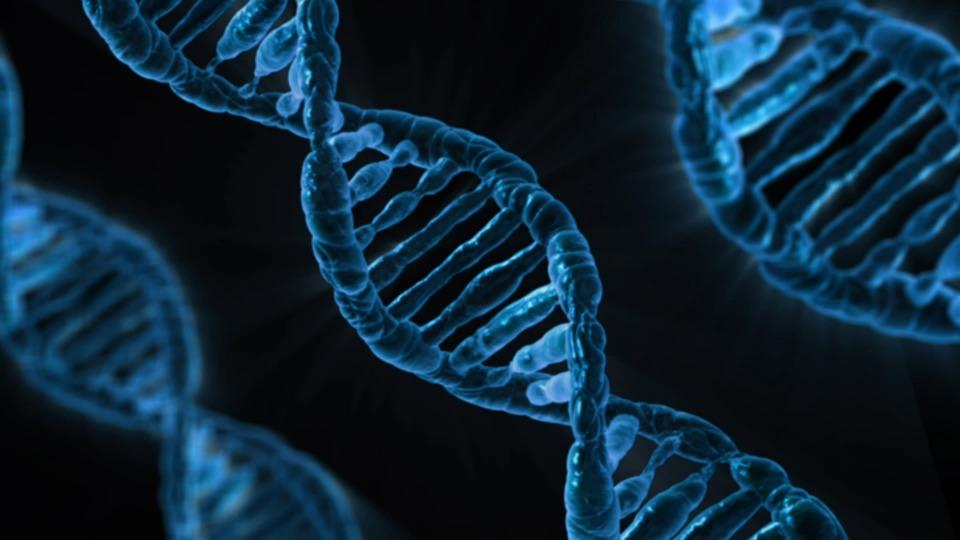 Hard//talk: De genen van Stef Blok