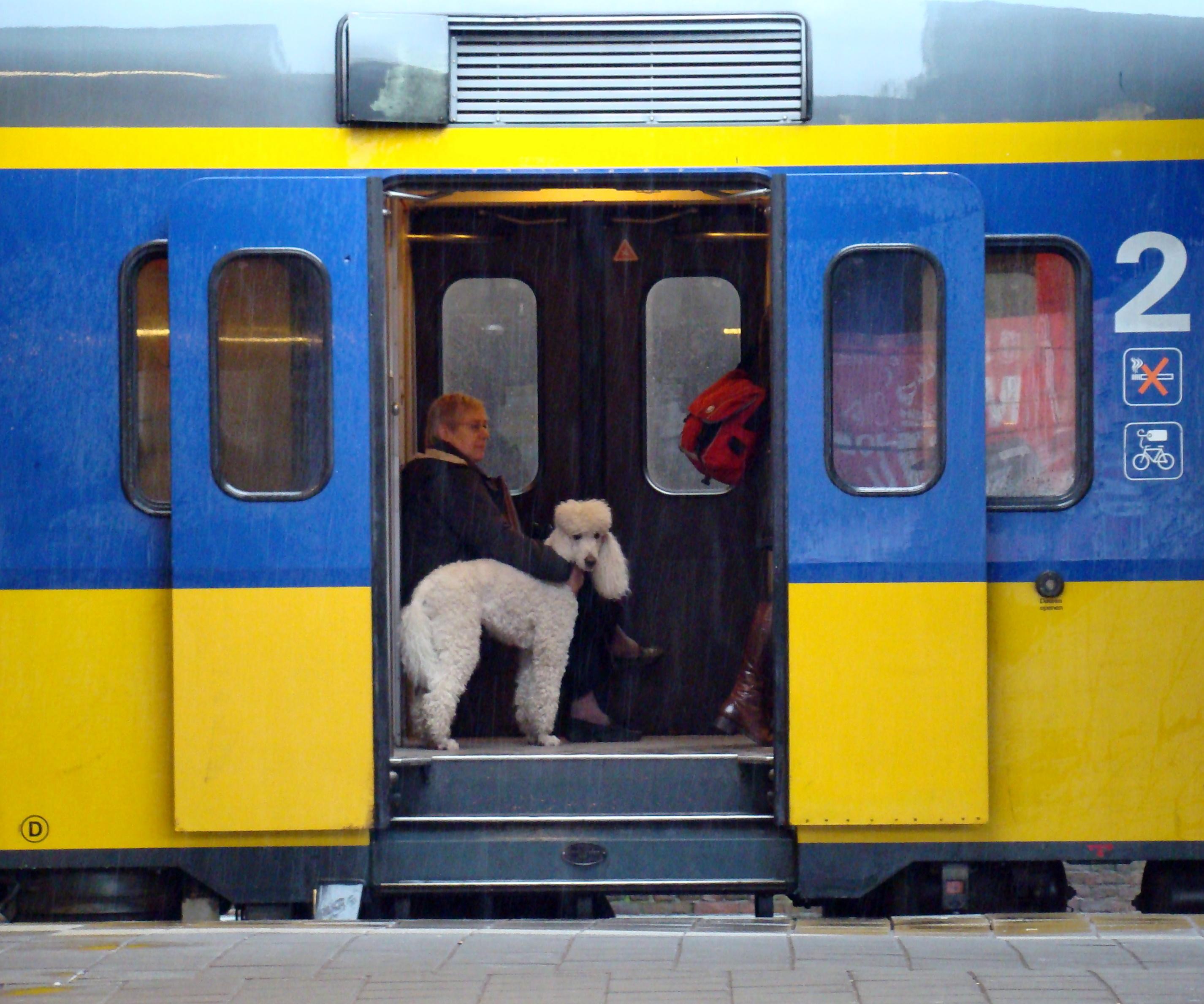 Ik neem soms de trein met dieren