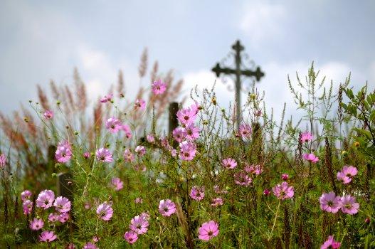 Tip: Praat over je begrafenis 1