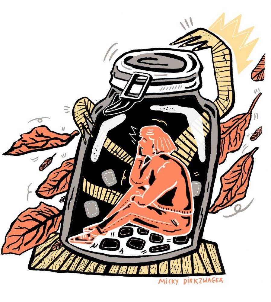 De dochter van Baba Yaga met illustratie van Micky Dirkzwager